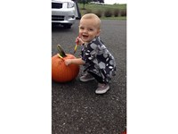 Pumpkin-Painting - - Infant